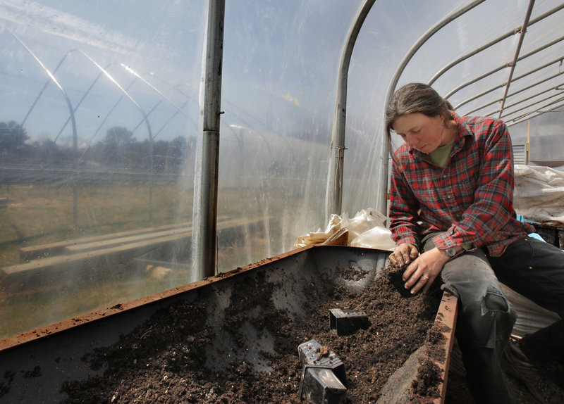 Beth Schiller fills a seedling cup with dirt in a greenhouse at Dandelion Spring Farm in Newcastle on Friday. It is getting more and more difficult for people to raise their own food, said Schiller, who grows vegetables on about five acres at the farm.