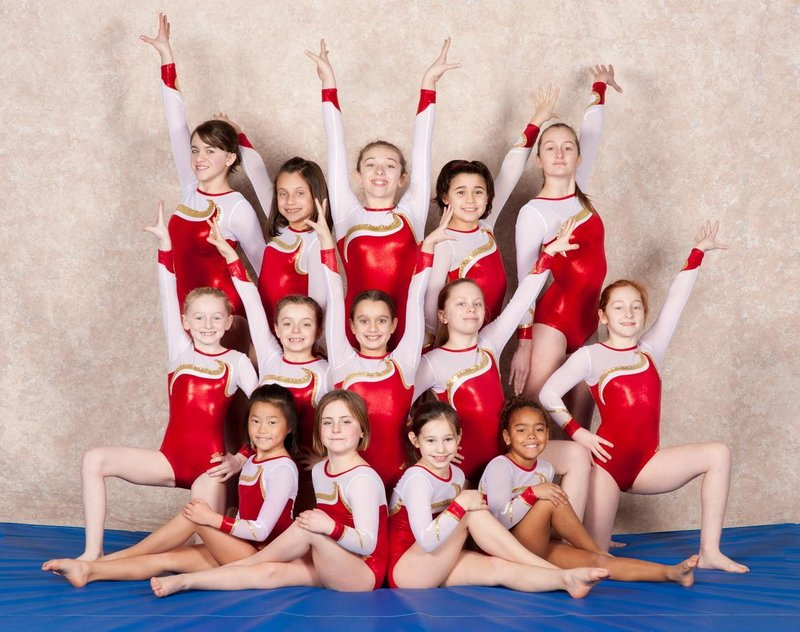 Members of the level 5 team from Dudziak's School of Gymnastics, which won a state championship: front row, left to right, Mia Pothier, Jaigan Boudreau, Danah MacLeod, Yvette Chevrin; middle row, Alexis Matteau, Sidney Sparda, Megan Gregoire, Madeline Rheaume, Elise Courtney; back row, Monica Rheaume, Katrin Dumont, Julia Toshach, Shannon Usher, Hannah Cerone.