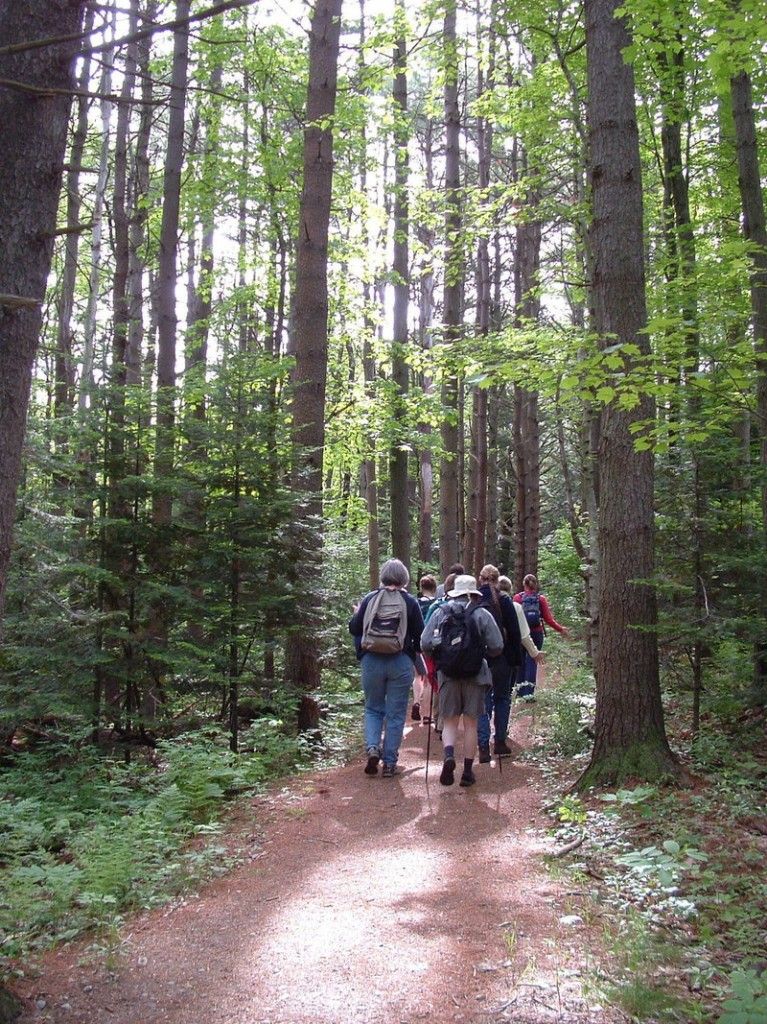 Walkers make their way along Portland's Stroudwater Trail. On June 4, Portland Trails will unveil its latest accomplishment: the 10-mile Forest City Trail.