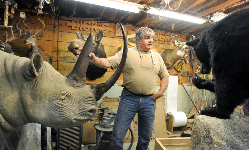Taxidermist Dick Galgovitch shows off his rare black rhinoceros in his basement workshop at his home in Lisbon Falls.
