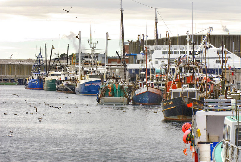 Fishing boats tied up at a wharf in Gloucester, Mass. Are catch shares the way to get some to return to Maine ports?