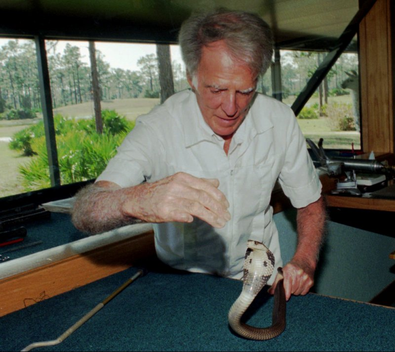 Bill Haast works with a Chinese cobra in 1996 near Punta Gorda, Fla. He survived 172 venomous snakebites, his wife said, leaving him immunized and able to donate life-saving blood to 21 victims over the years. He died of natural causes Wednesday.