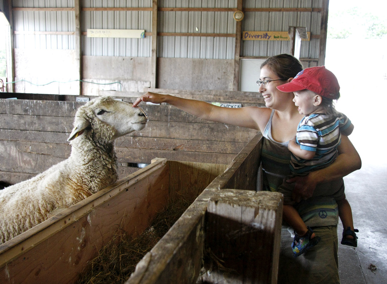 Jess Muise and her son, Oliver, 2, say hello to a sheep during Open Farm Day at Wolfe's Neck Farm in Freeport today.