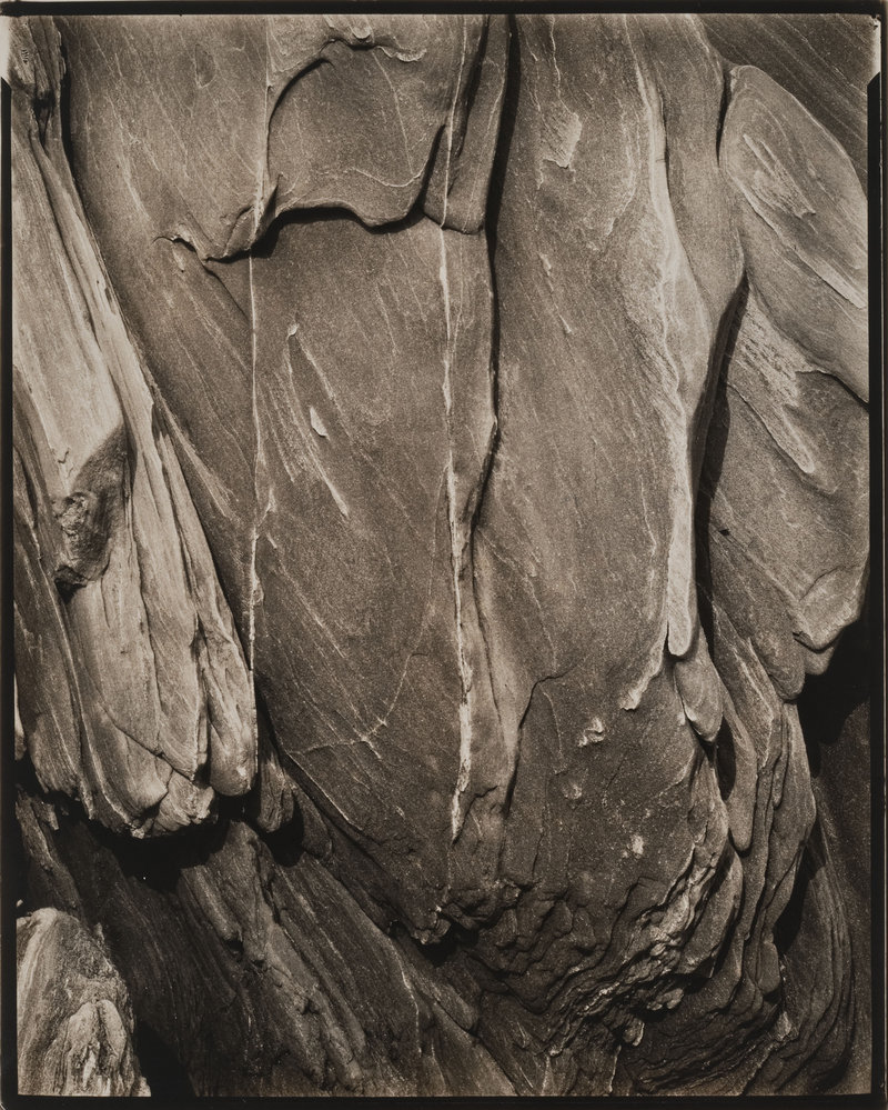 """Rock, Georgetown, Maine,"" gelatin silver print by Paul Strand, at the Portland Museum of Art."