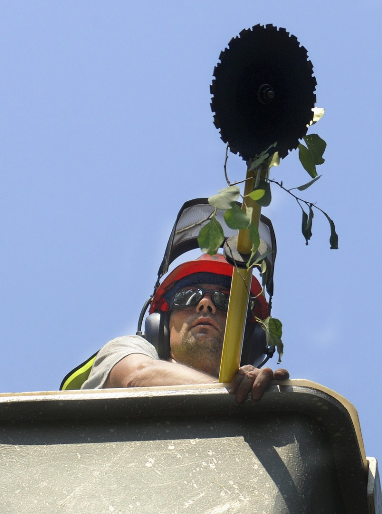 Jim Pike, who trains foremen for Lucas Tree, uses a whiz saw and a boom to cut down tree branches in Windham.