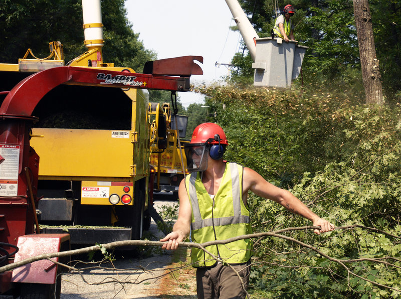 A Lucas Tree Experts crew works trimming trees in Windham. The recession had little effect on the company because its contracts are mainly with utility companies, and demand for electricity has stayed steady.
