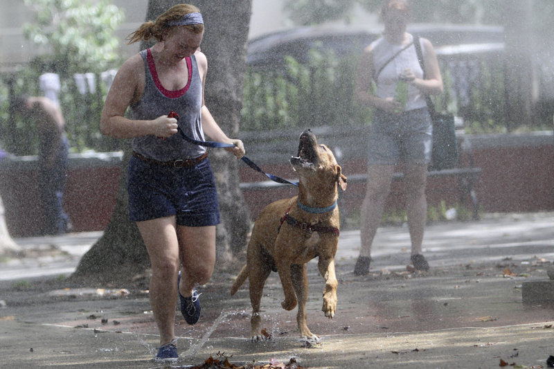Teresa Smit and Clifford, a 4-year-old mastiff-Labrador mix, cool off by running through a sprinkler on Saturday in New York. The National Weather Service said the temperature was 92 in Central Park at 10 a.m. Saturday.