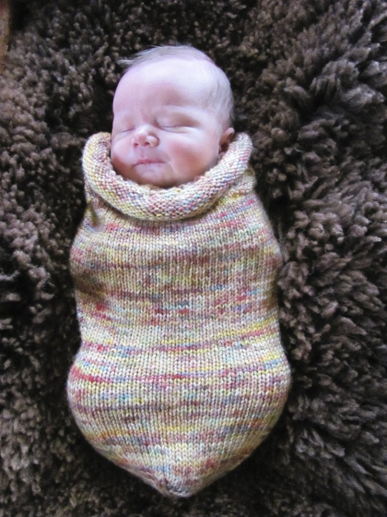 Luc Thomas Bellner models a baby woolie from Ruit Farm in Bristol, one of the 45 destinations on the Fiber Arts Tour Weekend that begins Friday.