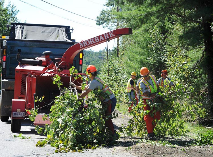 A Freeport Department of Public Works crew cleans up branches downed by Tropical Storm Irene on Flying Point Road today.
