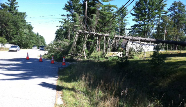 A downed tree on Route 302 in Windham this morning near the Raymond town line.