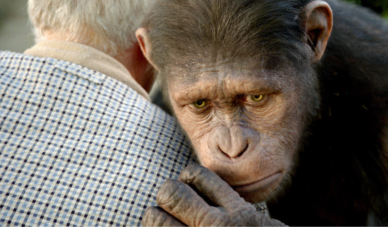 Caesar the chimp, a CG animal, is portrayed by Andy Serkis in
