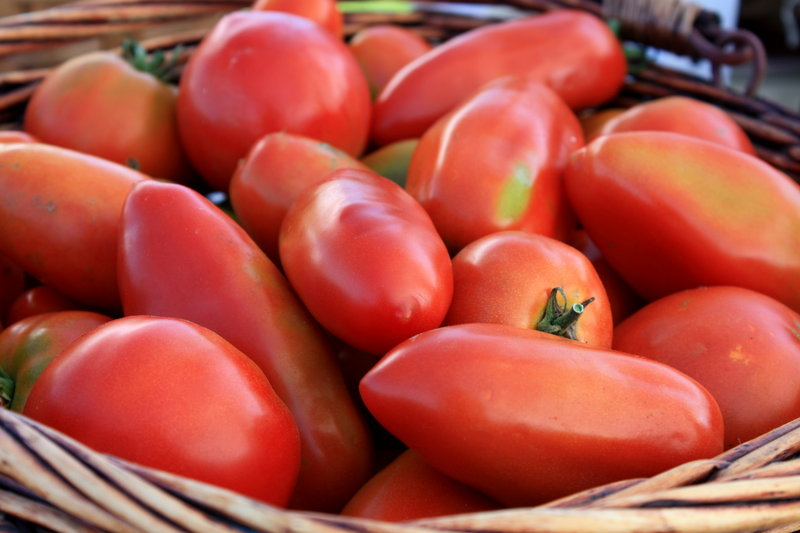 Tomatoes fresh from the garden can be frozen, skins and all, in gallon-sized plastic bags for use during the depths of winter.