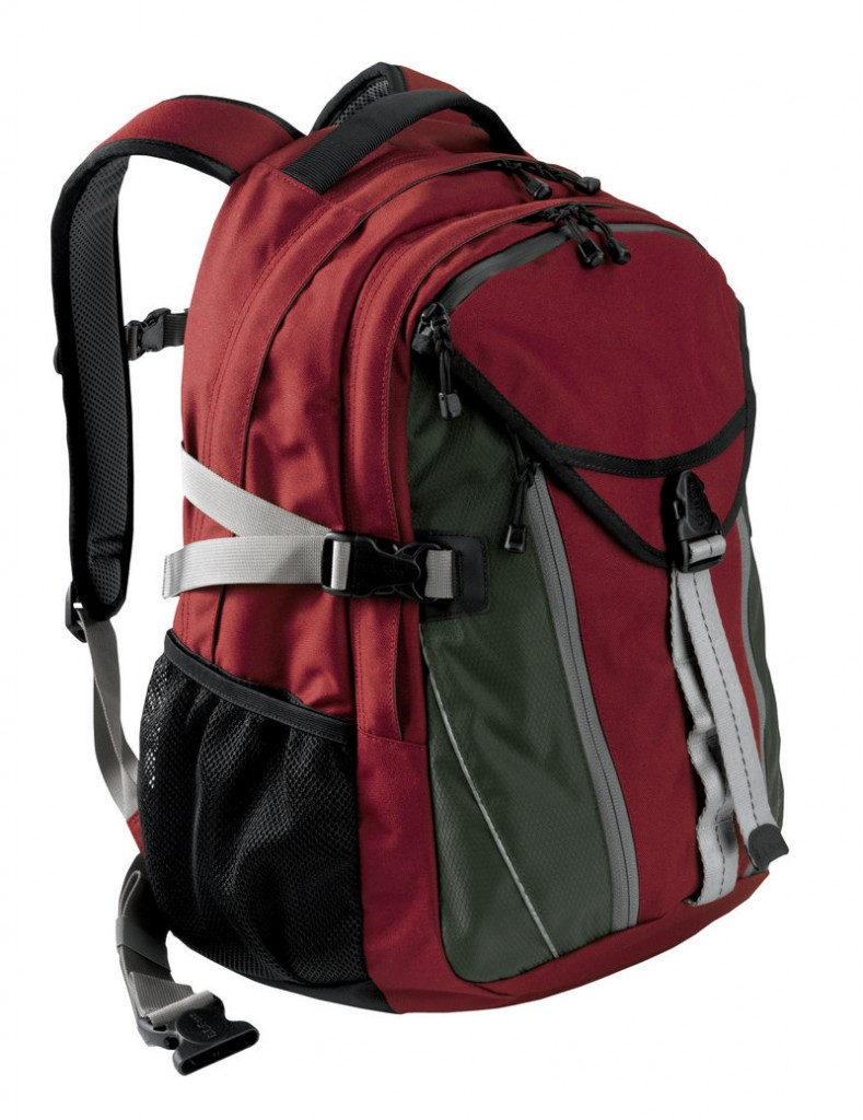The L.L. Bean Quad Pack has a padded laptop sleeve and sells for $59.99.