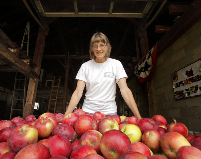 Ellen McAdam traces the family history of McDougal Orchards to a 1779 tax auction. The family grows 24 varieties of apples.