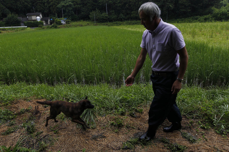 "Naoto Matsumura tends to local pets, including this dog, Aki, which were left behind after the Japanese government on March 11 ordered the 16,000 residents of Tomioka to evacuate after the Fukushima Dai-ichi nuclear power plant crisis. Said Matsumura, 53: ""If I give up and leave, it's all over."""