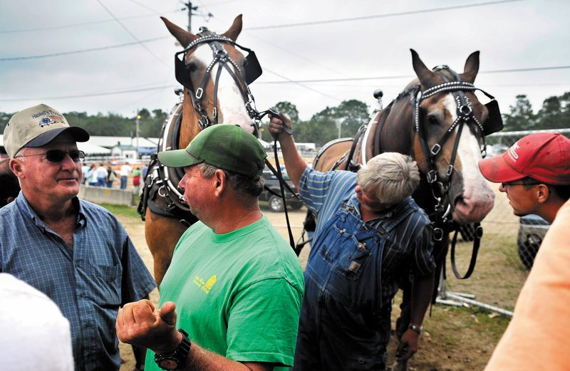 Teamsters inspect horses Monday before a scoot on the last day of the Windsor Fair. Teams from across New England pulled during the final event in the ring.