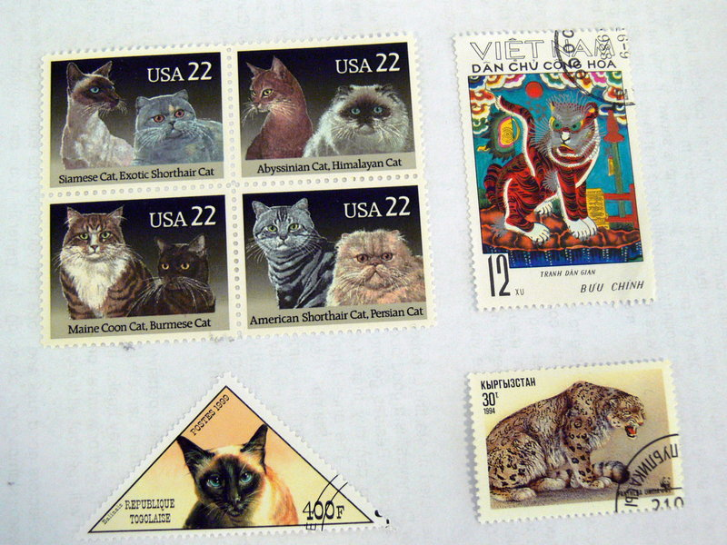 These cat stamps were collected by Tricia Currie Hunt of Windham. Top left are stamps from the United States, top right from Vietnam and bottom left from Togo. Hunt is trying to find out where the stamp on the lower right is from.