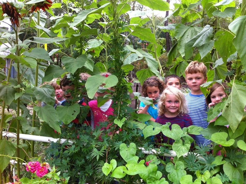 Youngsters at Georgetown Central School show off their garden, which is among those hosting free events for Saturday's School Garden Open House.
