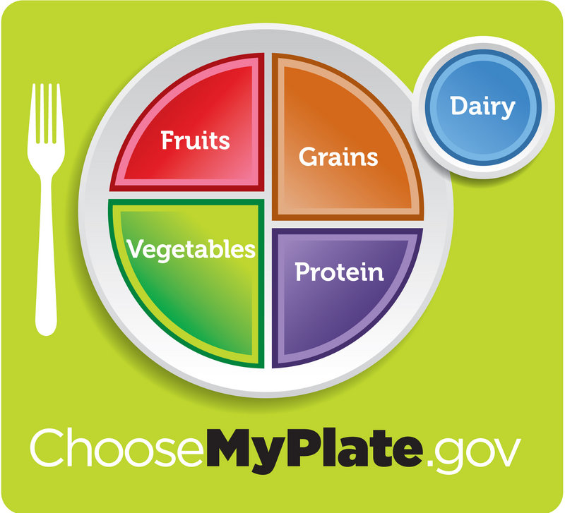 The U.S. Department of Agriculture's updated visual for its healthy eating guidelines.