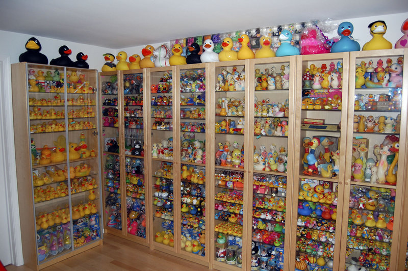 Charlotte Lee, a University of Washington engineering professor, has a record 5,239 rubber ducks in her rubber duck collection. She keeps her ducks corralled in floor-to-ceiling bookcases in the basement of her home.