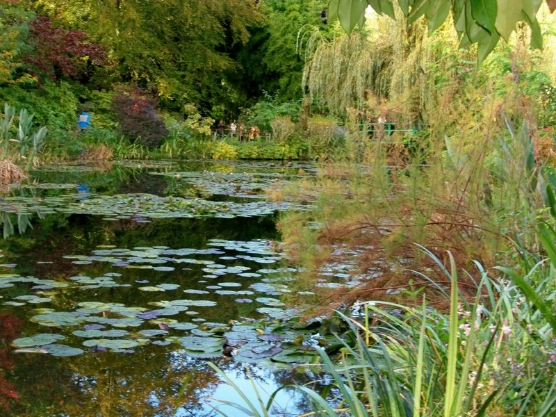 Monet's Japanese garden at Giverny, France.