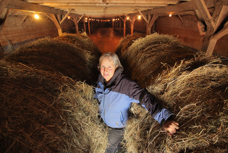 Lynn-Marie Plouffe sells hay and breeds horses at the 320-acre Dupuis Farm in Saco. The decline of harness racing is hurting both her hay sales and her breeding orders, she said. The industry isn't ready to give up on a proposal to allow Scarborough Downs to open a racino. The head of the Maine Harness Racing Commission said he agrees in general but worries that when slots and table games are added to harness racing, racing becomes an afterthought.