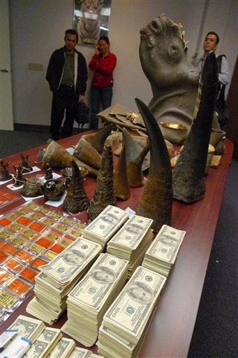 Feds crack rhino horn smuggling ring 7 arrested for Us fish and wildlife service jobs