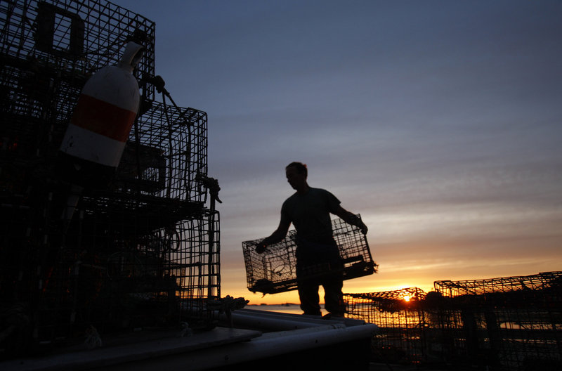 Lobsterman Bruce Steeves stacks traps at dawn in Portland during a previous season. Officials and fishermen are concerned that the Maine fishing industry is too reliant on lobster and needs diversification. Lobster accounted for 78 percent of the industry's 2011 value.