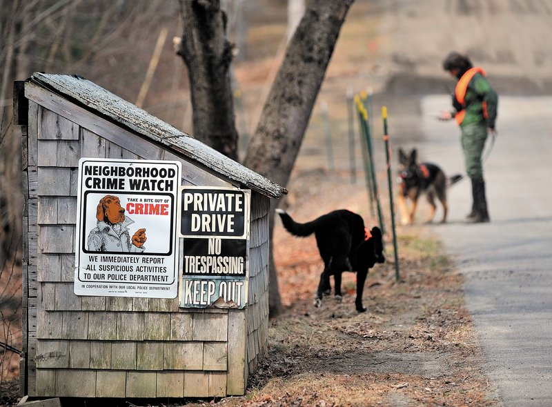 A volunteer with search dogs checks an area along Heath Court in Oakland on Saturday morning during a search for any clues to solving the disappearance of Ayla Reynolds.