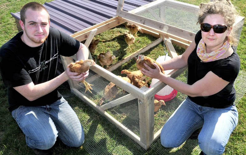 Unity College student Shayne VanLeer and school Food and Farm Projects Coordinator Sara Trunzo with the broiler chicks that wiil be raised for meat to support hunger relief efforts in Waldo County.