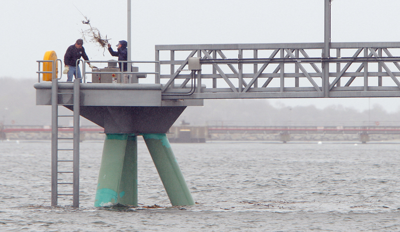 Randy Emmons, left, and Toni Doucette, workers with the city of Portland, remove an osprey nest at the end of the megaberth pier at Ocean Gateway today.