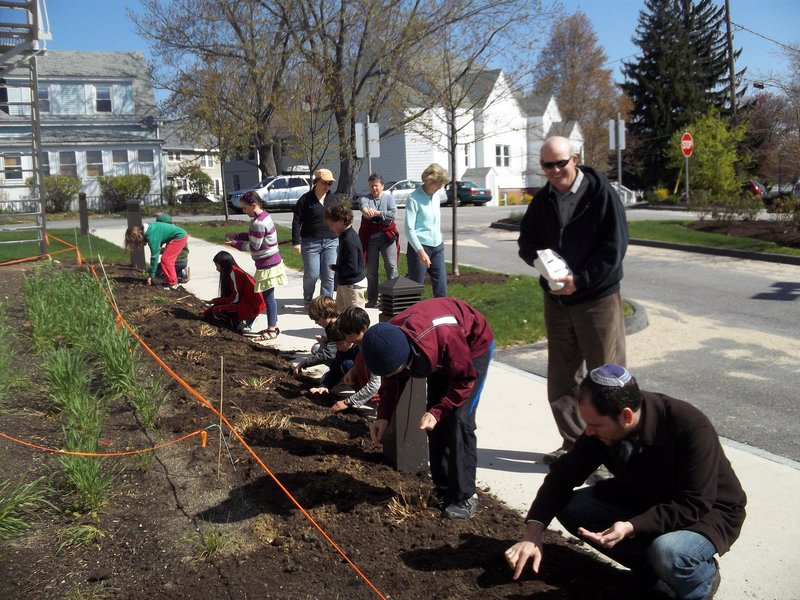 Rabbi Jared Saks, right, and Shai Levite participate as fifth-graders at Congregation Bet Ha'am seed the property at the South Portland synagogue. The students planted Glenn Hard Red, a Maine spring wheat, and also some Jerusalem wheat, an ancient variety originally found at Masada in Israel. They will also grow vegetables to donate to a local food pantry.