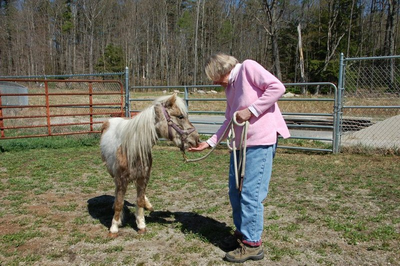 Maine State Society for the Protection of Animals president Marilyn Goodreau welcomes Misty to Windham.