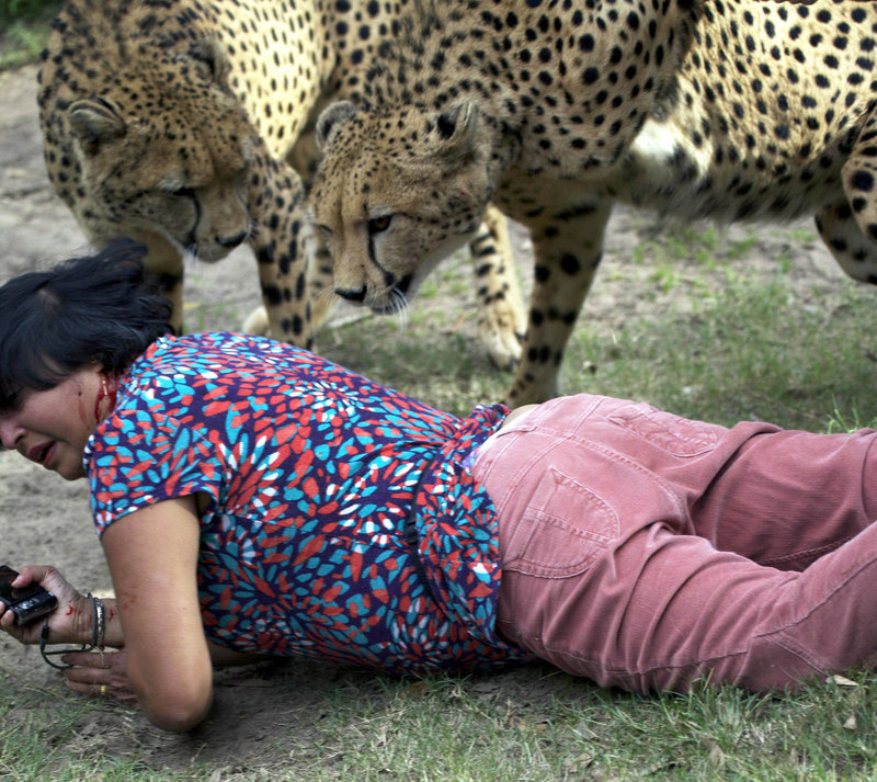 "D'Mello on the ground after the attack. The cheetahs ""were just excited,"" not being vicious, she said."