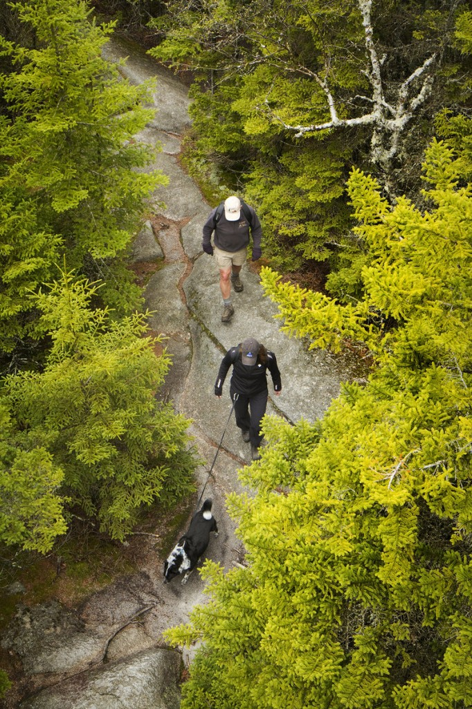 The hike to the peak of Bald Mountain takes under an hour to complete on moderately difficult terrain. The peak offers one of the best scenic views in the state.