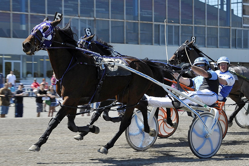 Kevin Switzer recorded his 3,000th career driving victory Saturday at Scarborough Downs, guiding pacer Magic Dancer to victory in the second race. Switzer, 55, added two more wins behind Bubba McGee and NF Sinfull to move to the top of the driver leaderboard for the season.