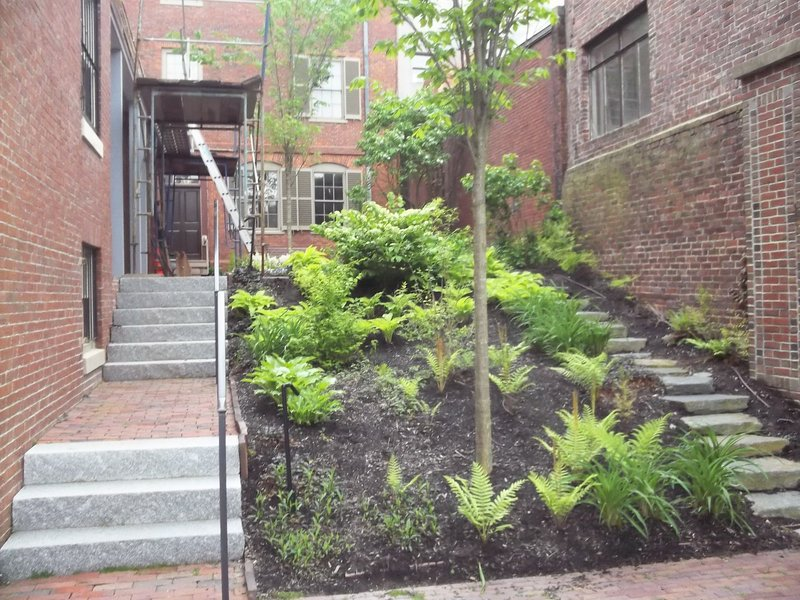 The garden as you look toward the house. The Longfellow Garden Club is hoping to makepeople more aware of the downtown oasis.