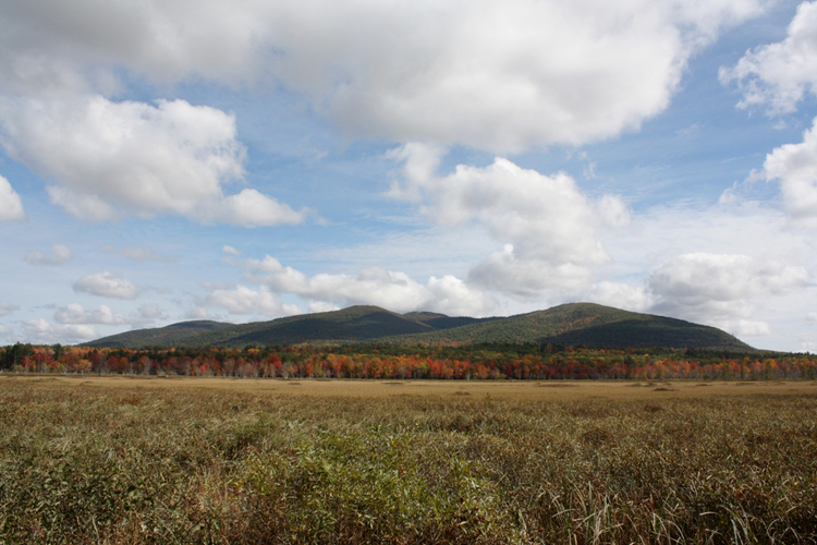 In this photo of the Black Brook Bog, located on Harnden Road in Denmark, Pleasant Mountain's westerly side is in full view.