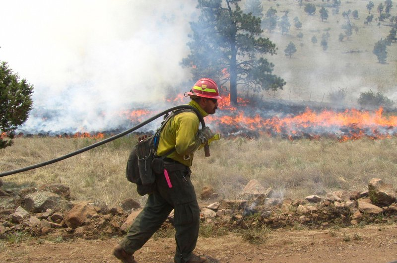 A firefighter works a blaze Wednesday in the Gila National Forest in New Mexico, where forest managers historically have let fires burn as long as conditions are favorable.