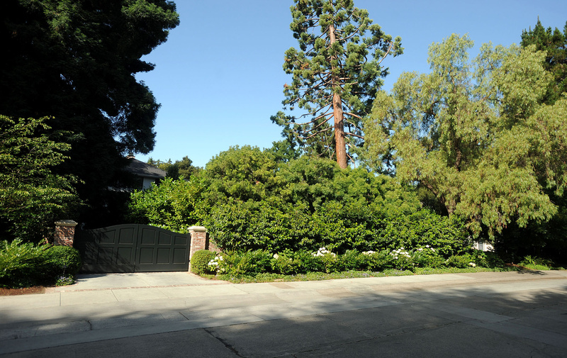 Trees covers the front of Facebook CEO Mark Zuckerberg's house in Palo Alto, Calif.