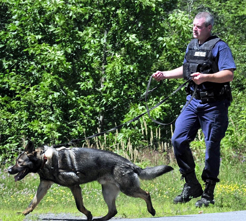 A Maine State trooper and a tracking dog enter the woods off Route 150 in Skowhegan on Monday to search for escaped Somerset County Jail inmate Dylan Perkins.