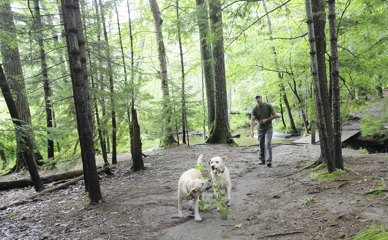 Mike Dore of Portland walks with his dogs Murphy and Blue on a trail in the Robinson Woods II parcel the Cape Elizabeth Land Trust is working to buy.