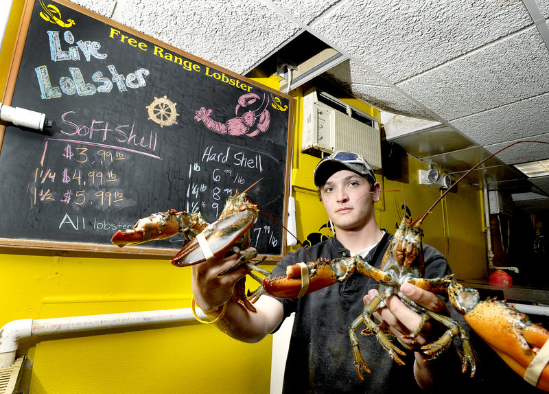 William Ray holds a pair of soft-shell lobsters at Free Range Fish & Lobster market in Portland last week.
