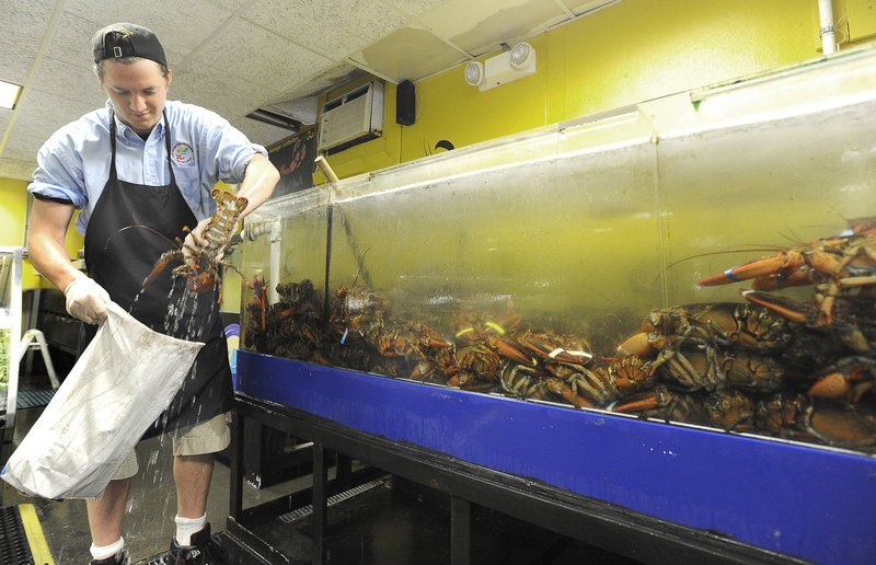 "Jack Burke selects lobsters for a customer at Free Range Fish & Lobster in Portland last week. While dealers and retailers add to lobster prices, ""there's always wiggle room if you've got product you want to move,"" says one industry expert."