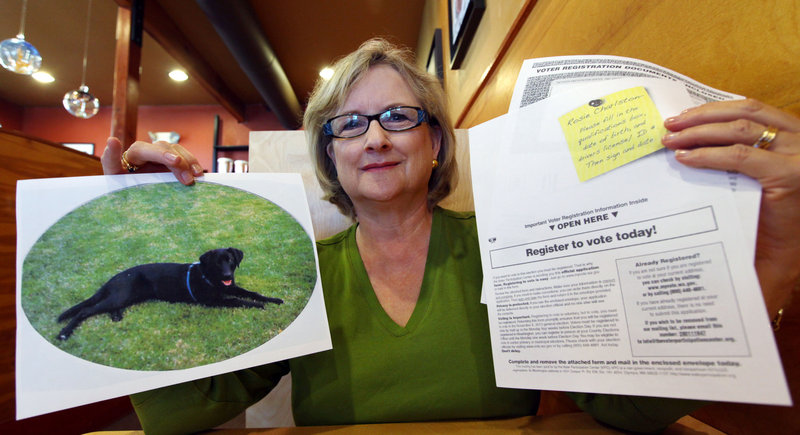 "Brenda Charlston holds a photo of her long-deceased dog, Rosie, and a voter registration form for ""Rosie Charlston"" that arrived in the mail for the pet last month, in Seattle."