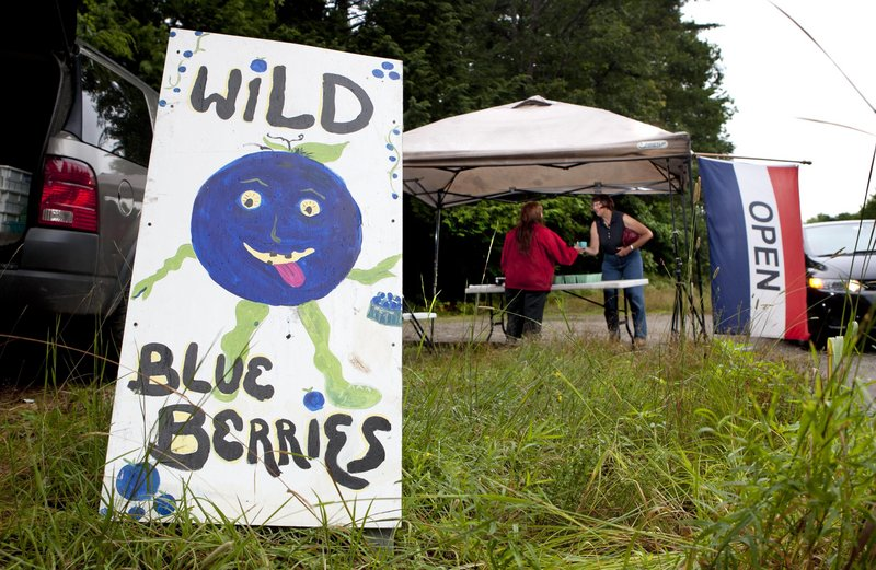 A sign advertises wild blueberries for sale at a roadside stand in Woolwich. A small amount of Maine's crop is sold fresh, but most of it goes to food processors.