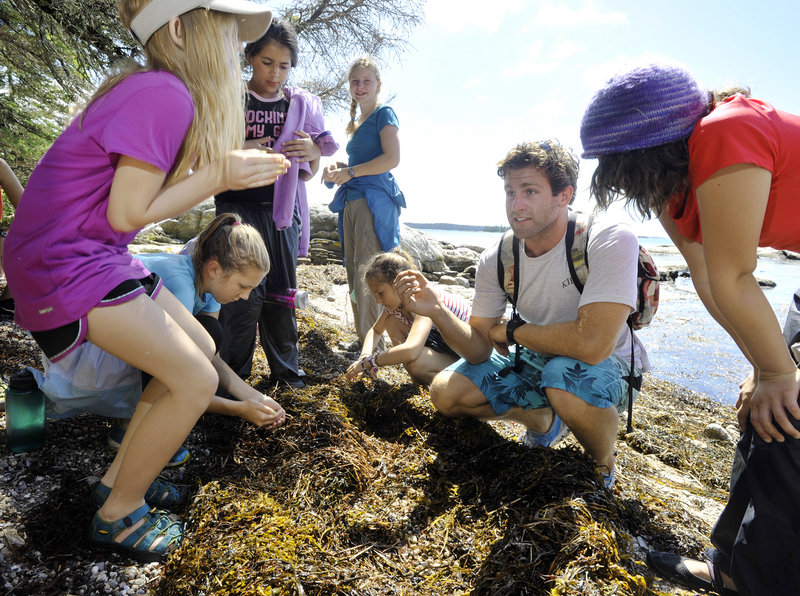 Hog Island Camp, a famous Audubon classroom site on the mid-Maine coast, is rebuilding its Audubon programs with the help of volunteers. Instructor Ryan Pelletier shows a group of young campers that sand fleas found in the sea grasses actually can be edible.