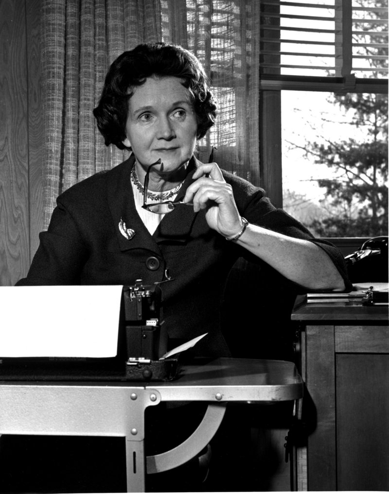 "Rachel Carson poses at her typewriter in her Washington, D.C., home in 1963. Her book ""Silent Spring"" inspired many readers to pursue environmental activism."
