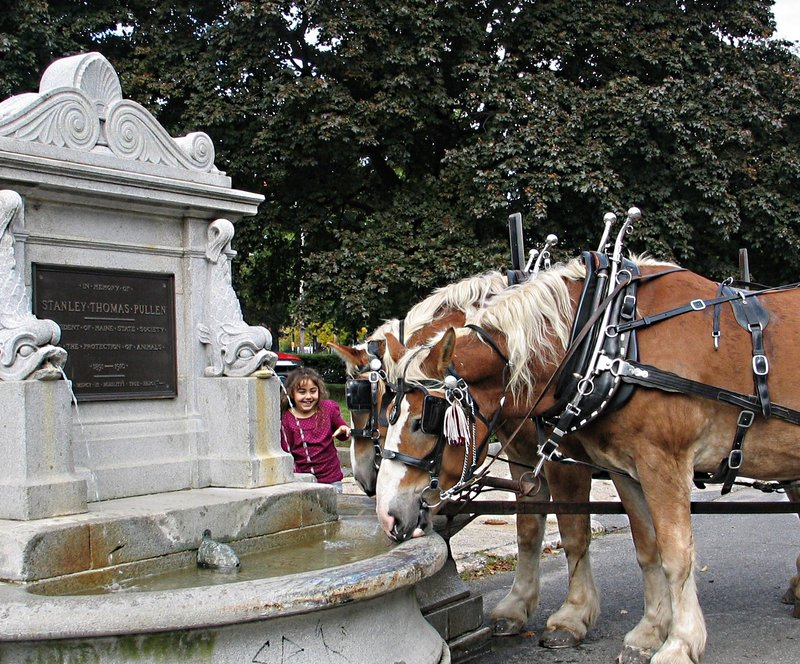 Horses still pause to drink at the Pullen Fountain on Federal Street in Portland. The fountain will be the subject of a talk on Sept. 7 sponsored by the Portland Public Art Committee.