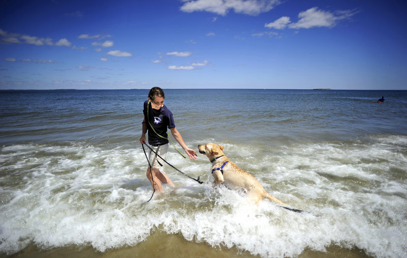 "Shannan Hall-Nutting, owner of Finish Forward Dogs in Saco, plays with Curly at Bayview Beach Wednesday. Some Saco residents have complained that the beach has become a ""dog mecca"" since beaches in neighboring communities have curtailed dogs' access."